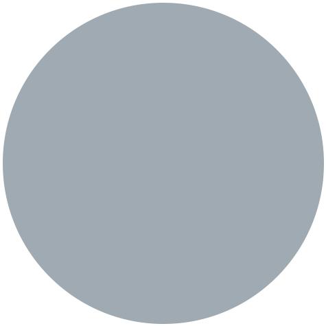 Branding: Light Gray color dot