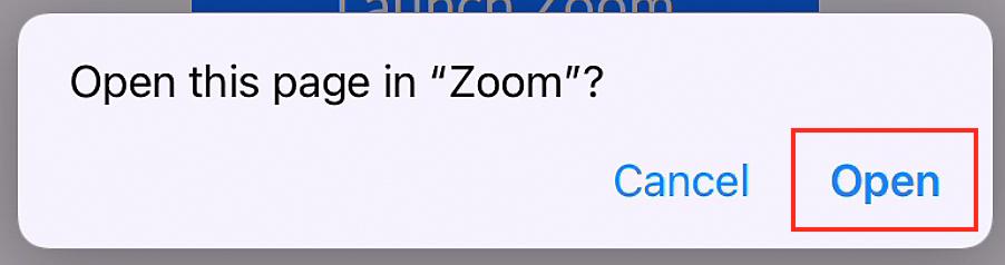 Phone Open in Zoom App